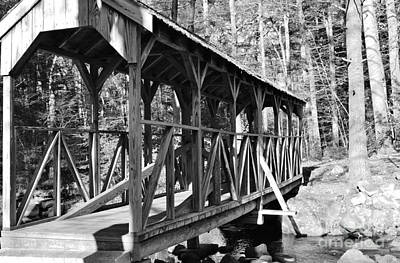 Photograph - The Old Footbridge II by Barbara Bardzik