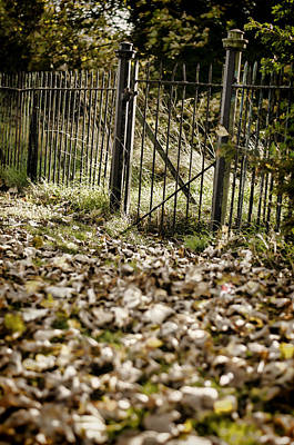 Forest Photograph - The Old Gate by Heather Applegate