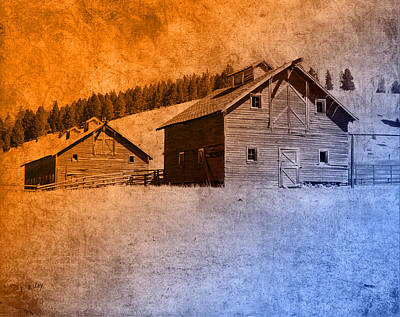 The Old Homestead Art Print by Fran Riley