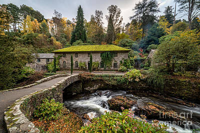 Mills Photograph - The Old Mill by Adrian Evans