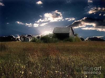 Photograph - The Old Pasture by Scott B Bennett