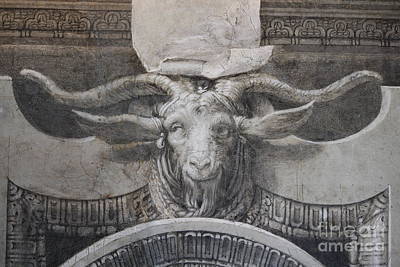 Photograph - The Old Ram by Mary-Lee Sanders