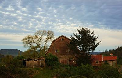 Photograph - The Old Red Barn by Angi Parks