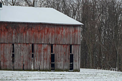 Photograph - The Old Red Barn by Mary Carol Story