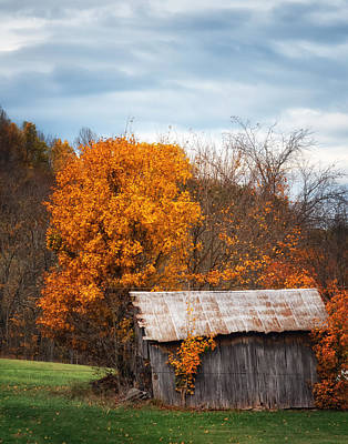 Photograph - The Old Shed In Fall by Richard Kopchock