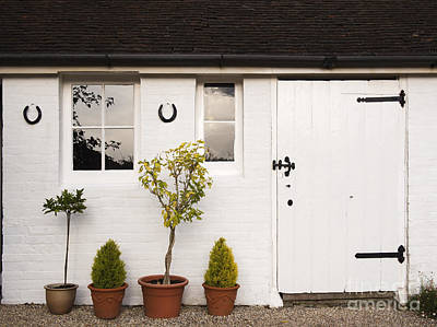 The Old Shed Art Print by Louise Heusinkveld