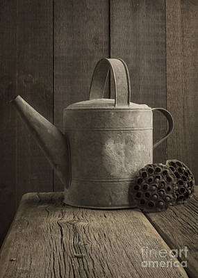 Galvanize Photograph - The Old Watering Can by Edward Fielding