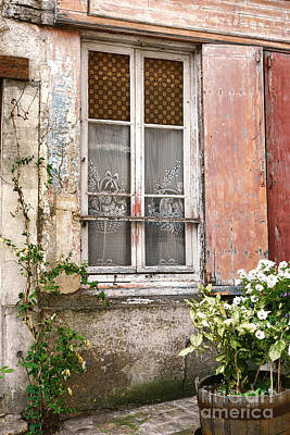 Flower Planter Photograph - The Old Window With The Cats On The Curtains by Olivier Le Queinec