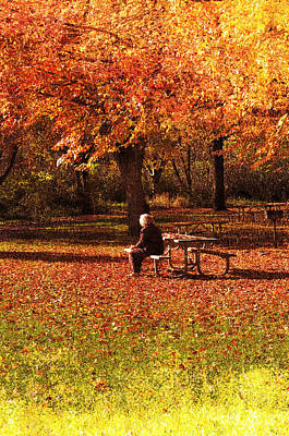 Photograph - The Old Woman In The Park by Gary Silverstein