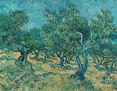 Olive Wood Painting - The Olive Grove by Vincent van Gogh