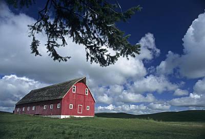 Photograph - The Olson Barn by Doug Davidson