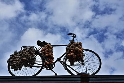 Photograph - The Onion Bicycle by Aidan Moran