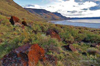 Photograph - The Orange Lichen Rocks Of Lake Abert by Michele Penner