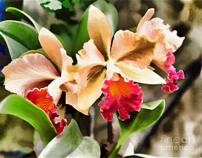 The Orchid Art Print by G Sugal
