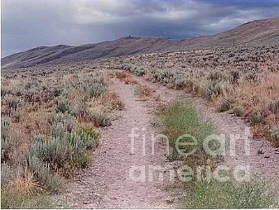 Photograph - The Oregon Trail by Chalet Roome-Rigdon