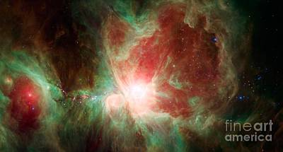 Photograph - The Orion Nebula by Science Source