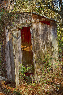 The Outhouse Art Print by Anne Rodkin