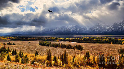 Photograph - The Overlook by Jim Garrison
