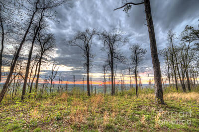 Arkansas Photograph - The Ozark National Forest by Twenty Two North Photography