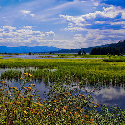 Sandpoint Photograph - The Pack River - Hope Idaho by David Patterson