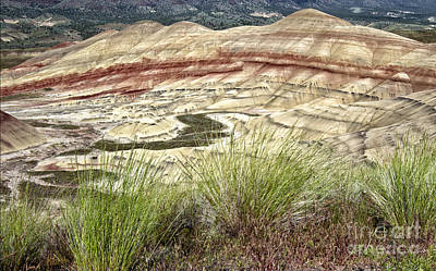 Photograph - The Painted Hills by Stuart Gordon
