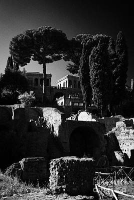 Flavia Photograph - The Palatine Hill And Flavian Palace As Viewed From The Imperial Roman Forum Rome Lazio Italy by Joe Fox