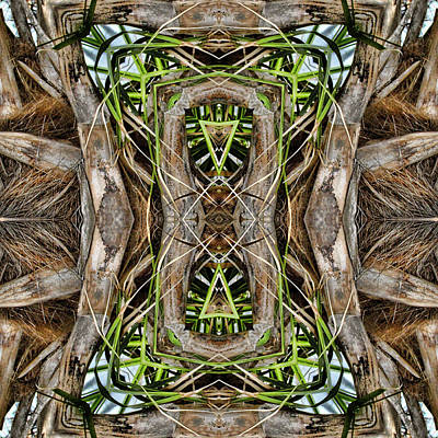 Digital Art - The Palm Project 14 Square by Wendy J St Christopher