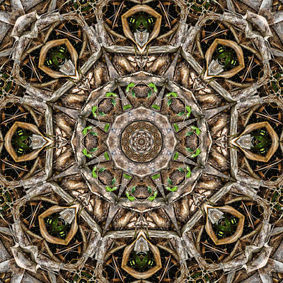 Digital Art - The Palm Project 17 Square by Wendy J St Christopher