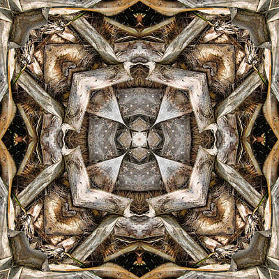 Kaleidoscope Digital Art - The Palm Project 19 Square by Wendy J St Christopher
