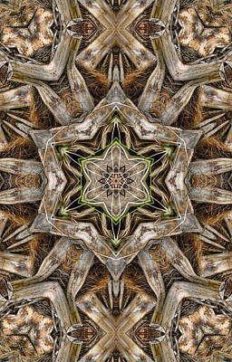 Digital Art - The Palm Project 2 Vertical by Wendy J St Christopher