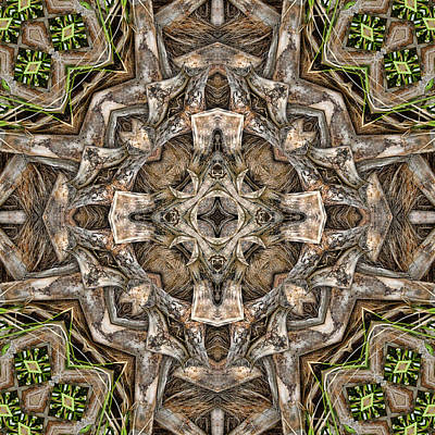 Digital Art - The Palm Project 21 Square by Wendy J St Christopher