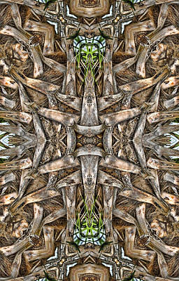 Digital Art - The Palm Project 6 Vertical by Wendy J St Christopher
