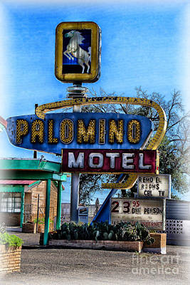 Photograph - The Palomino by Jim McCain