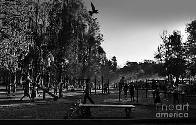 Photograph - The Park At Dusk - Sao Paulo by Carlos Alkmin