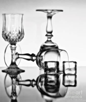 Art Print featuring the photograph The Party's Over by Linda Blair