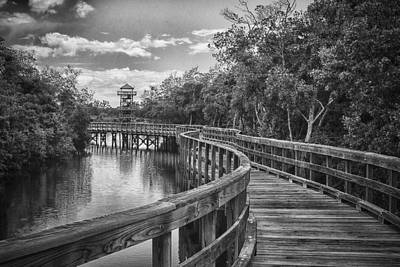 Photograph - The Path - Bw by Nicholas Evans