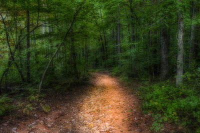 Photograph - The Path Ahead by Harry B Brown