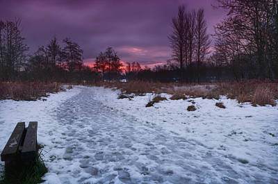 Photograph - The Path By Dusk by Jean-Noel Nicolas