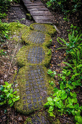 Photograph - The Path Created by Roxy Hurtubise