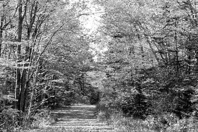 The Path Less Traveled Black And White Art Print by Brett Pelletier