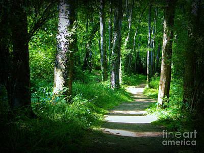 Photograph - The Path by Lorraine Heath