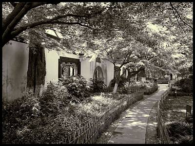 Photograph - The Path On Westlake by Robert Knight