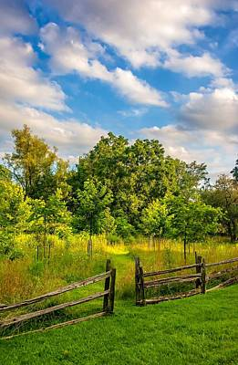 Split Rail Fence Photograph - The Path by Steve Harrington