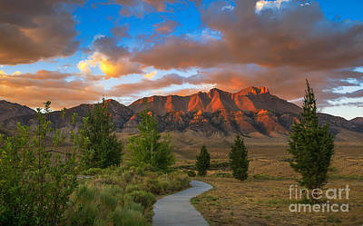 Lost River Mountains Photograph - The Path To Beauty by Robert Bales