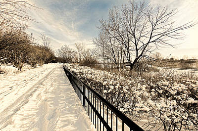 Photograph - The Path To Cold by Celso Bressan