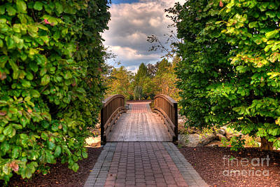 Photograph - The Path To The Garden by Mark Dodd