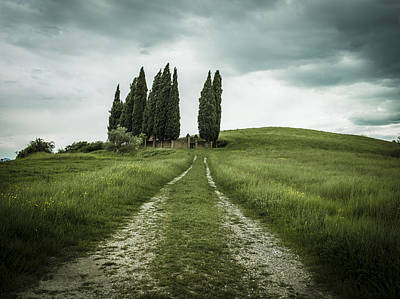 Green Cemetery Road Photograph - The Path To The Old Graveyard In Tuscany by Roberto Pastrovicchio