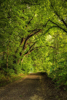 Photograph - The Path To Wildcat Park by Scott Bean