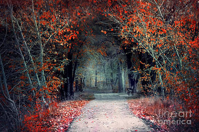 Photograph - The Pathway Of Disappearing Colour by Tara Turner
