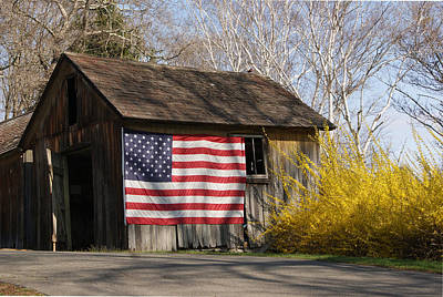Photograph - The Patriot In Springtime by Margie Avellino
